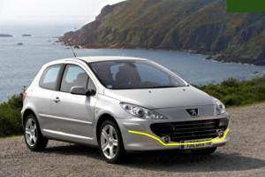 Peugeot--307